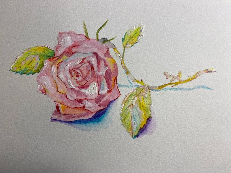 Pink rose image 0
