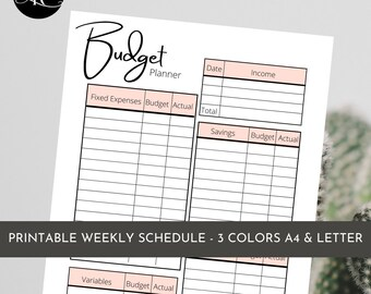 Monthly Budget Planner Spreadsheet | Personal Budget Template | Income & Expense Money Management | Simple Finance Planner | Financial Goal