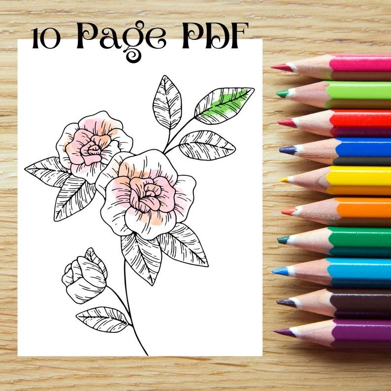 10 Flower Coloring Pages PDF Bundle image 0