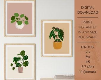 Set of 3 Plant Illustrations Printable Wall Art   Digital Download