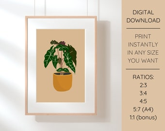 Alocasia Plant Illustration Printable Wall Art   Instant Download