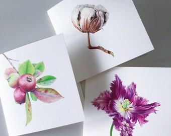 Set of 3 Art Blank Cards - Parrot Tulip, Cotton Ball, Guava. Botanical card, Birthday Card, Fine Art, Realistic style, Floral