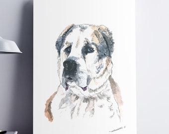 Central Asian Shepherd Dog. Custom Watercolor Dog Portrait By Photo.