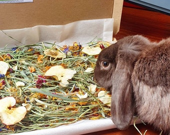 foraging box for small animals. rabbits, guinea pigs & hamsters. 3 sizes available. dried fruit, veg, flowers and timothy hay. treats snacks