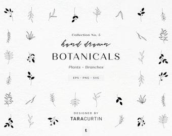 24 Plants and Branches, Collection No. 5, Plant Clipart, Plant SVG, Botanical Elements, Sprigs, Leaves, Plant SVG Bundle, Plant SVG Cricut