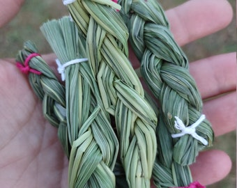 Appalachian Sweet Grass, sweet grass braids, sweet grass smudge, wild harvested sweet grass