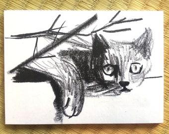 "Post Card ""Black Cat"""
