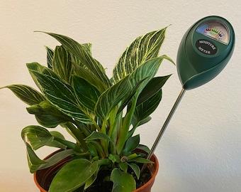 Stop killing your plants by overwatering!!Single Needle Moisture Meter - Read description!