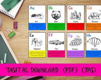 Educational A-Z Alphabetical Flashcards with interesting facts