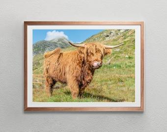 Highland Cow Digital Download | Switzerland Wall Art Black White Photography | Swiss Alps Photo print