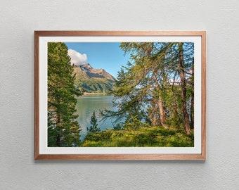 Nature Photo Switzerland Digital Download | Summer Landscape Photography | Digital Art Print Wall Art Poster
