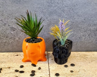 Pair Spooky Ghost and Skull Succulent Planters, Halloween Succulent Planter