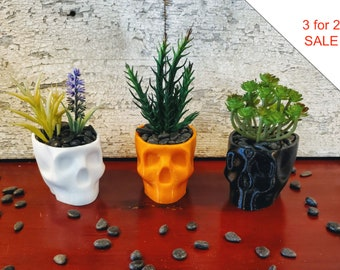 Creepy Spooky Skull Succulent Planter (3 for price of 2 SALE)