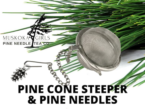 WHITE PINE 125g Loose Needles + STEEPER with Pine Cone charm - Wild Eastern Canadian White Pine Natural