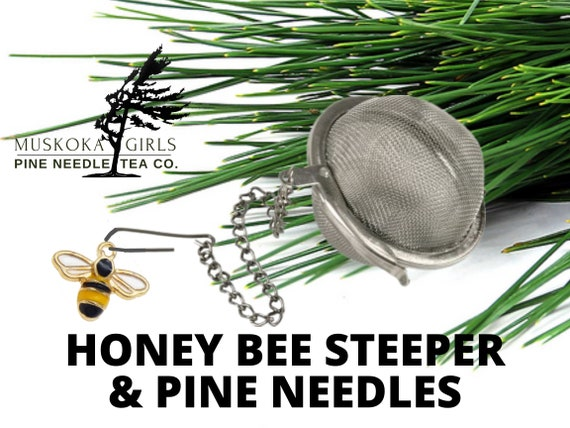 WHITE PINE 125g Loose Needles + STEEPER with Honey Bee charm - Wild Eastern Canadian White Pine Natural
