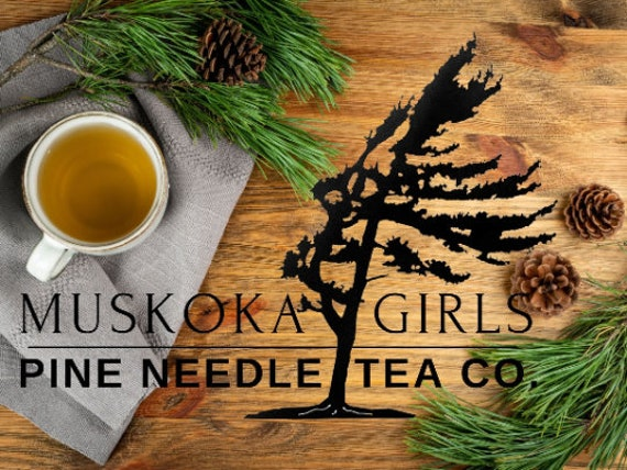 Canadian WHITE PINE Needle TEA bags, Wild Eastern Canadian White Pine Natural Wild