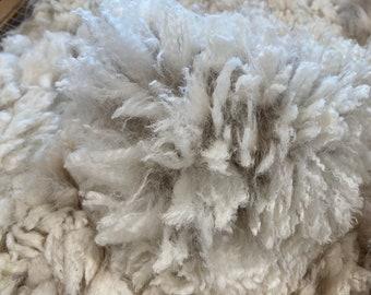 Whole Alpaca Fleece ~ Iceman's Accoyo Dice ~ 2021