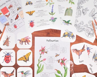 Pollination Unit Pack: 3-part Montessori cards, classroom posters, and activities - science for kids