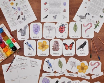 Colors in Nature Unit Pack: preschool printable activities and three-part cards