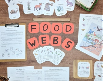 Food Webs Unit: an ecology unit study - with activities, science projects, and flashcards!