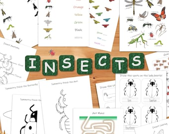 Insect Busy Book: preschool activity binder, toddler printable worksheets