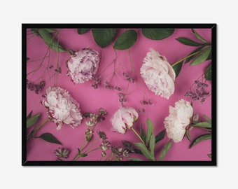 Pink Peony Flower Composition Photography Prints Nature Wall Art Home Decor Minimalist