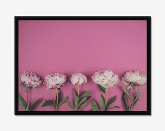Pink Peonies Flowers Photography Prints Nature Wall Art Home Decor Minimalist