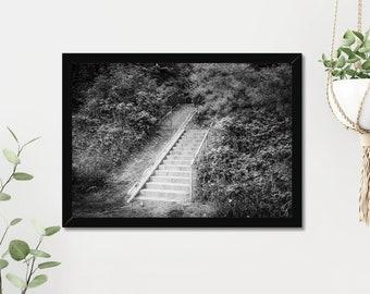 Stairway   High Quality Black & White Print - A3, A4