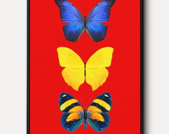 Three Butterflies WALL ART - Colorful Butterfly on RedCanvas Art, Butterfly Print, Contemporary Art, Butterfly Canvas Framed, Death and Hope