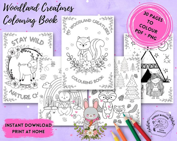 Woodland Animal Coloring Page For Kids Forest Coloring Book