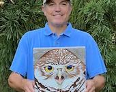 Burrow Owl – Original Painting