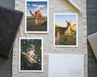 Australian wild animals photography postcards. A6 size (14.8x10.5 cm) with white border, double-sided. Single or set of 3.