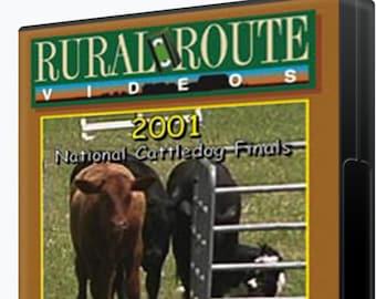 USBCHA Cattle Dog Championships