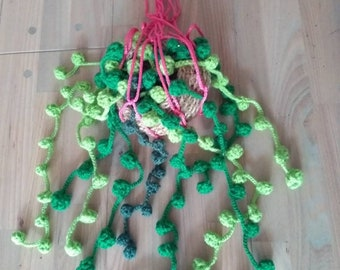 Plant crocheted, hanging plant