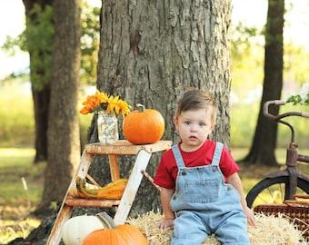 SALE 15% OFF Toddler Boy Denim Overalls