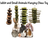 Rabbit Hanging Chew Toys with Timothy Grass Cake, Balls, Bamboo Sticks, Apple Wood Branch Treats and For Other Small Animals