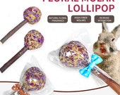 Mix Flower Lollipop Rabbits Treat & Small Animals