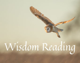 Wisdom Reading with Ritual, gift for friend, tarot card reading, personalized gift, Goth, Witch, Wicca, shabby Chic, Zen