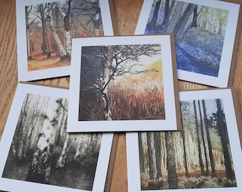 Woodland 5 card pack from original etchings and monoprint.