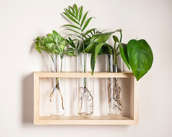 Grow Margo Propagation Station Frame with Hooks - Hang or Stand - 3 glass tubes 2'' wide - Set in a Light Stained Wooden Frame