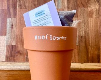 Sunflower Homegrown Flower Kit