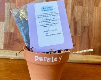 Parsley Homegrown Herb Kit