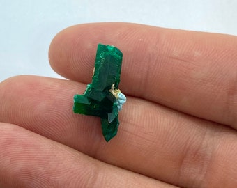 Dioptase with shattuckite from Namibia