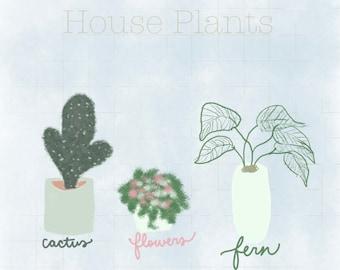 House Plants Digital Print