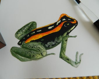 watercolour post card poison dart frog note / greeting / birthday , frog Art