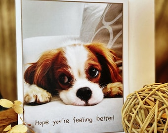 Cavalier King Charles Spaniel Dog Card with envelopes blank inside—Set of 5 (4.25 x 5.50), Get WellCard, Sympathy Cards