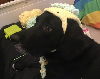 Pineapple dog hat (medium)