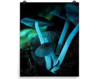 Glowing Grisette Mushrooms