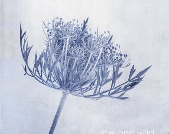 Blue White Floral Botanical  Limited Edition Print or Ready to Hang - Custom Sizes - Art Panel - Floral canvas -bedroom and lounge wall art