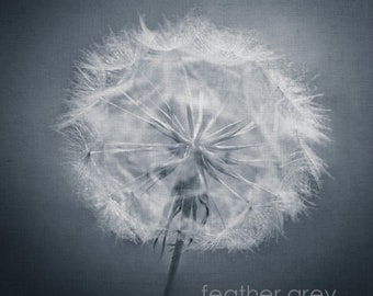 Black and White Dandelion print and wall art-custom sizes-limited edition prints unframed or ready to hang- art panel, canvas and boxframe